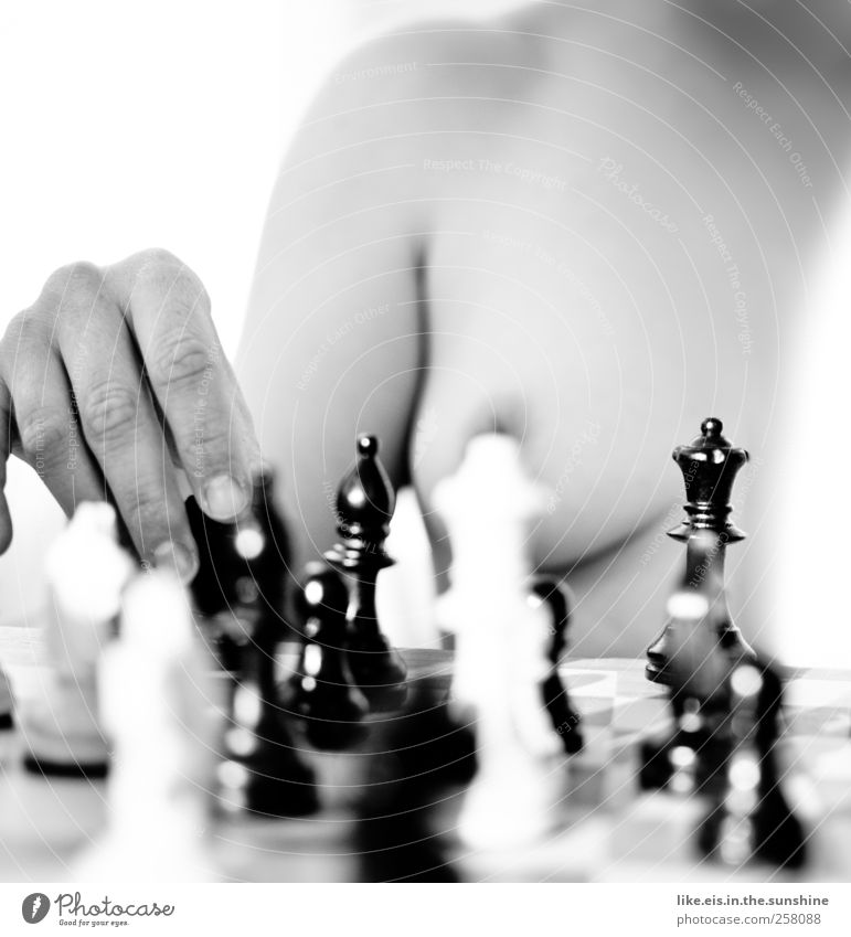 Fancy a game of chess? Leisure and hobbies Feminine Young woman Youth (Young adults) Woman Adults Partner Body Skin Breasts Hand Fingers 1 Human being Playing
