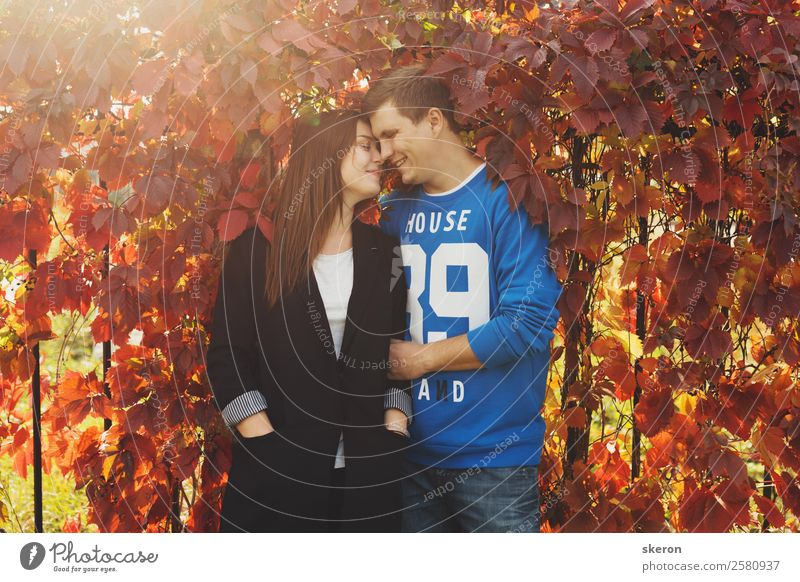 loving couple embracing about the colored autumn leaves Human being Masculine Feminine Young woman Youth (Young adults) Young man Family & Relations Friendship