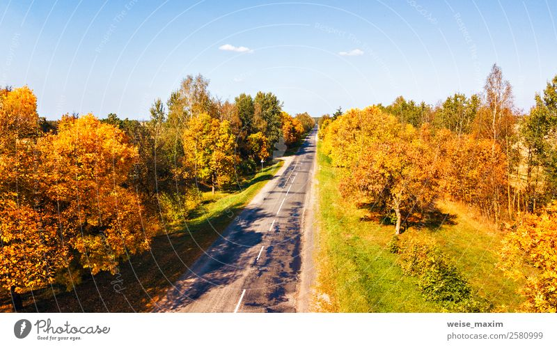 Aerial view on countryside road. Straight road view from above. Vacation & Travel Tourism Trip Far-off places Nature Landscape Plant Air Sky Summer Autumn