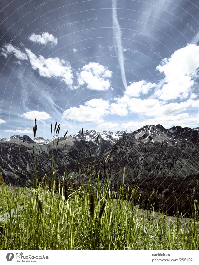 Sky Nature Blue Green Environment Landscape Mountain Grass Alps Allgäu Oberstdorf Allgäu Alps