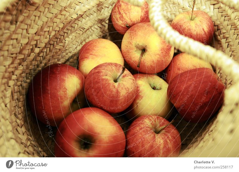 Red Yellow Food Warmth Gold Fruit Fresh Sweet Round Many Simple Apple Healthy Eating Harvest Bag Vitamin