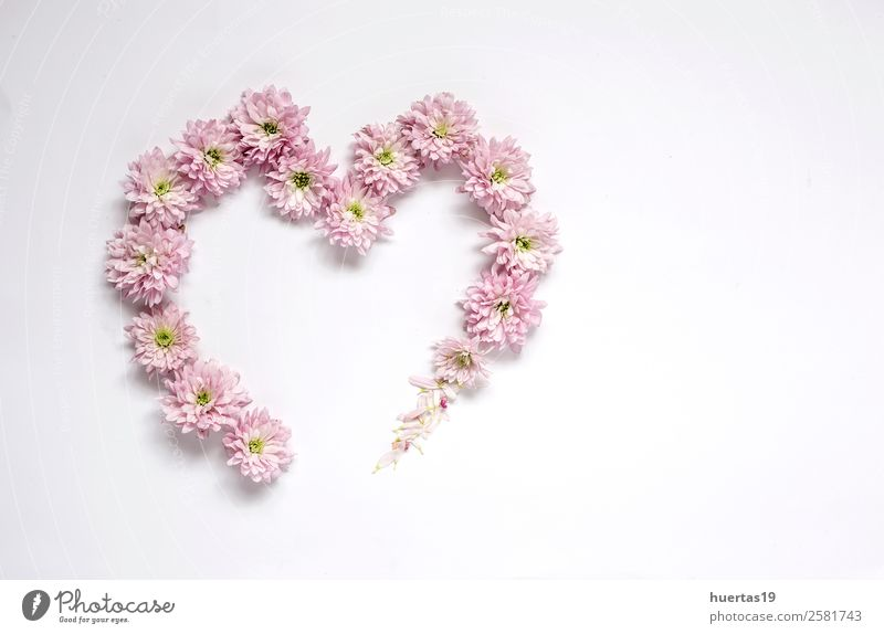 Heart frame pattern with flowers, pink flower Elegant Style Personal hygiene Valentine's Day Nature Plant Flower Bouquet Natural Pink Love Colour background