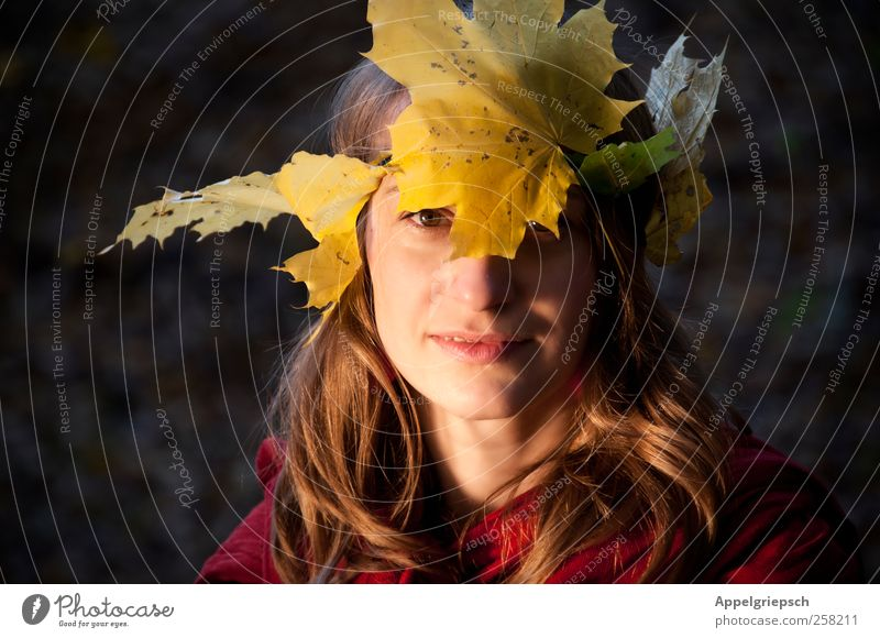 Woman Human being Nature Youth (Young adults) Beautiful Leaf Adults Yellow Autumn Feminine Freedom Warmth Dream Natural Wild Crazy