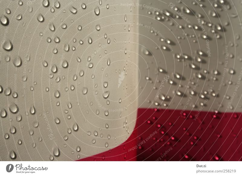 SHOE Bathroom Water Wet Red Wellness Shower curtain Drops of water Textiles Take a shower Screening Hydrophobic Colour photo Interior shot Close-up Detail