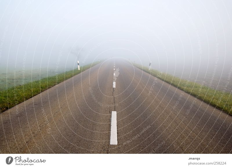 road Fog Transport Traffic infrastructure Street Driving Future Lanes & trails Resume Colour photo Exterior shot Deserted Copy Space top Central perspective