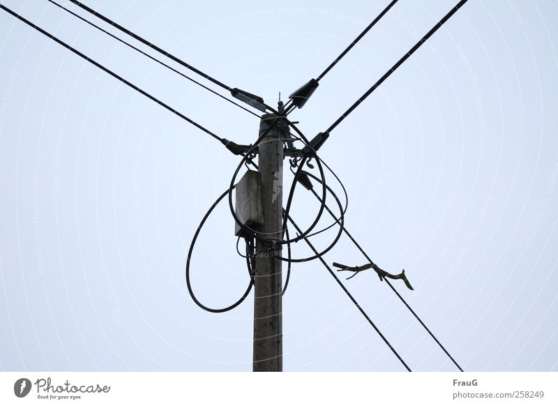 Wired and intercepted Electricity pylon Energy industry Sky Catch Contact Transmission lines Colour photo Exterior shot Deserted Day Upward