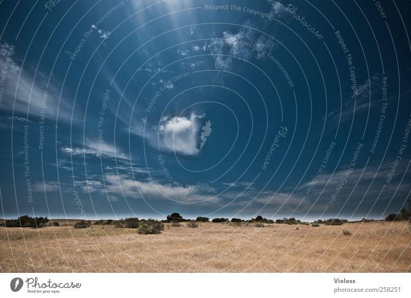 Sky Nature Blue Plant Vacation & Travel Summer Joy Clouds Relaxation Landscape Grass Beautiful weather Discover Joie de vivre (Vitality) Portugal Algarve