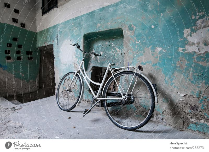 Bicycle in the stable Wall (barrier) Wall (building) Wait Old Esthetic Trashy White Mysterious Nostalgia Decline Past Transience Turquoise Derelict Patina