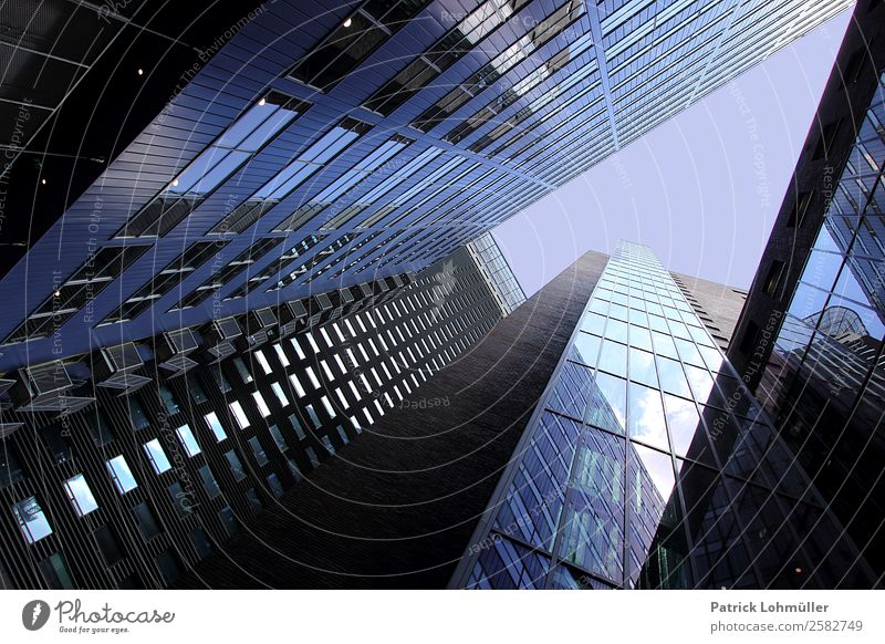 facade jungle Design Workplace Office Economy Trade Services Construction site Financial Industry Cloudless sky Den Haag Netherlands Europe Capital city Skyline