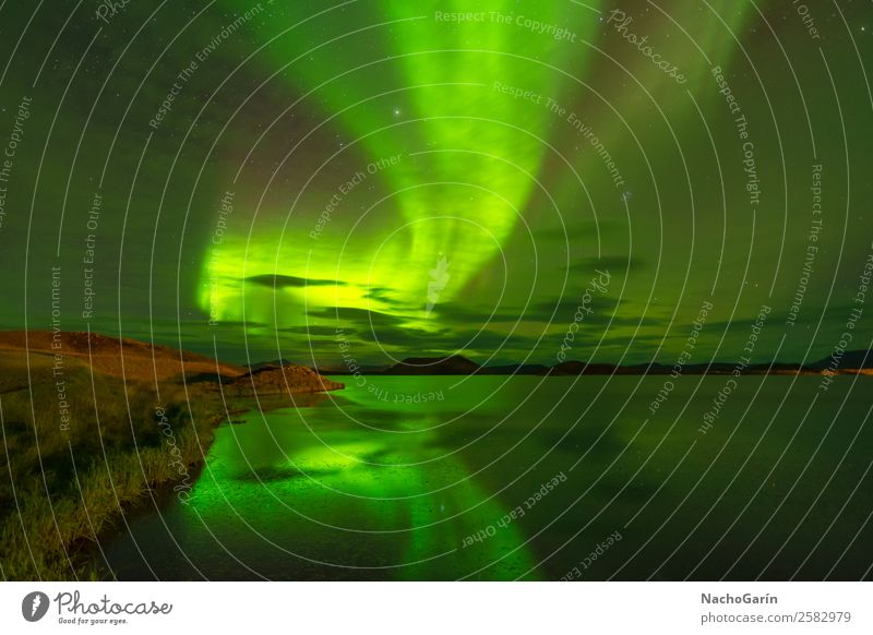 Northern lights (Aurora Borealis) reflected in the lake, Iceland Vacation & Travel Adventure Winter Nature Landscape Water Sky Night sky Stars Lake Europe Dream