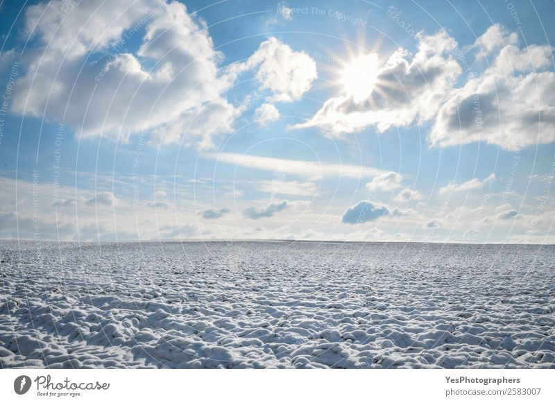 Endless field of snow and sunny sky Calm Winter Snow Nature Landscape Horizon Beautiful weather Meadow Infinity Bright Natural White February Germany Amazing