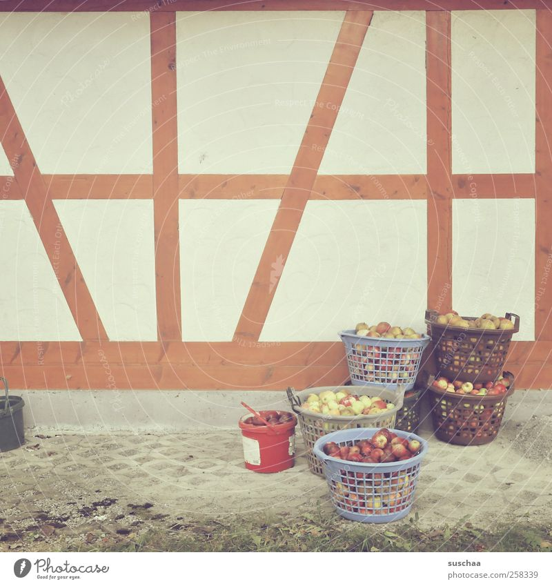 Nutrition Wall (building) Wood Food Wall (barrier) Fruit Facade Apple Agriculture Harvest Basket Bucket Half-timbered facade