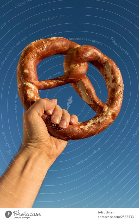 Long live the pretzel. Dough Baked goods Bread Feasts & Celebrations Oktoberfest Man Adults Hand Fingers Sky Cloudless sky Select To hold on To enjoy