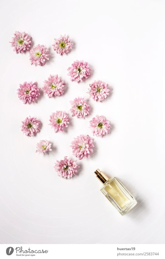Bottle of fragance coming out flowers Nature Plant Colour Flower Natural Style Copy Space Above Design Elegant Card Violet Bouquet Personal hygiene Make-up
