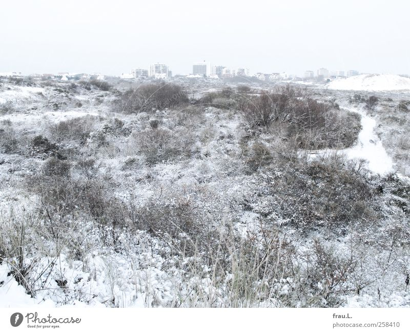 City Vacation & Travel Ocean Winter Beach Loneliness House (Residential Structure) Snow Landscape Coast High-rise Tourism North Sea Dune Destruction