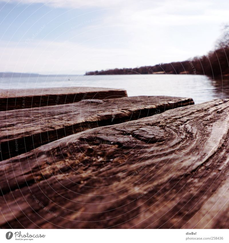"Ammersee Environment Nature Water Summer Lakeside Lake Ammer ""Bridge Wooden walkway"" Relaxation Experience Vacation & Travel Freedom Leisure and hobbies Idyll"