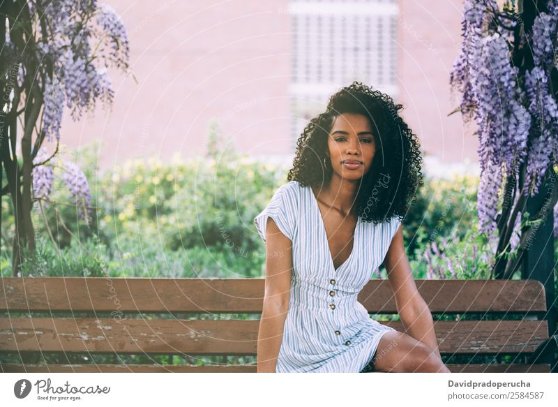 Happy young black woman sitting surrounded by flowers Woman Nature Summer Colour Beautiful Tree Flower Relaxation Black Lifestyle Adults Blossom Natural Garden