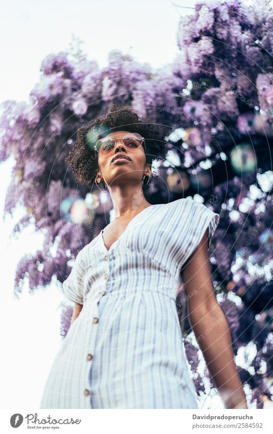 Happy young black woman surrounded by flowers Lifestyle Beautiful Relaxation Summer Garden Human being Feminine Woman Adults Nature Tree Flower Blossom Dress