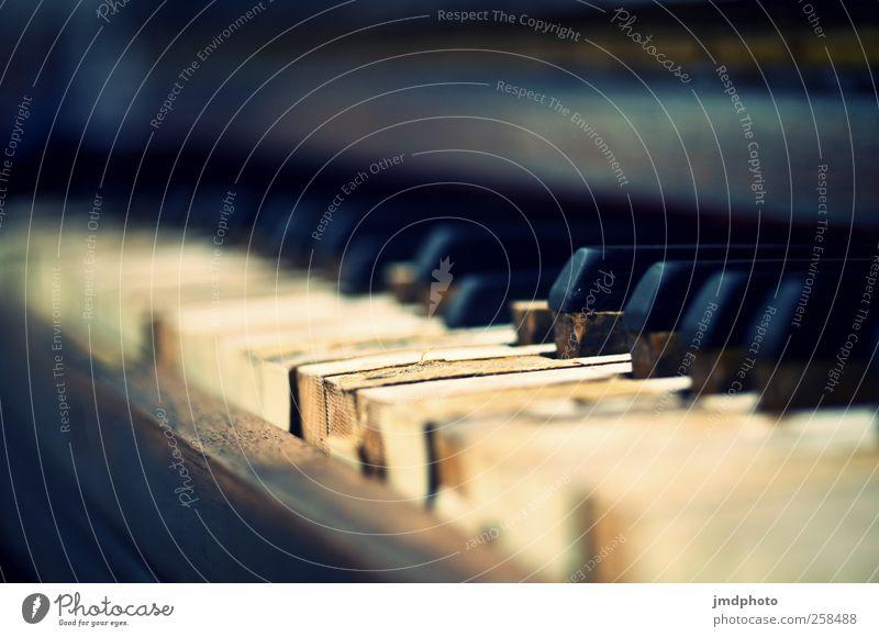 Old Calm Music Art Contentment Flat (apartment) Leisure and hobbies Elegant Living or residing Culture Bar Concert Passion Keyboard Joie de vivre (Vitality)