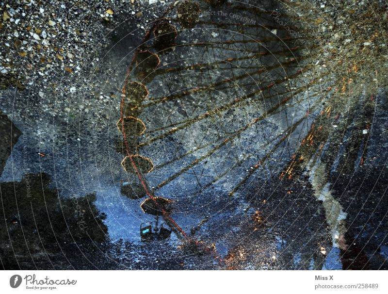 wishing well Feasts & Celebrations Fairs & Carnivals Water Illuminate Wet Ferris wheel Reflection Water reflection Puddle Colour photo Exterior shot