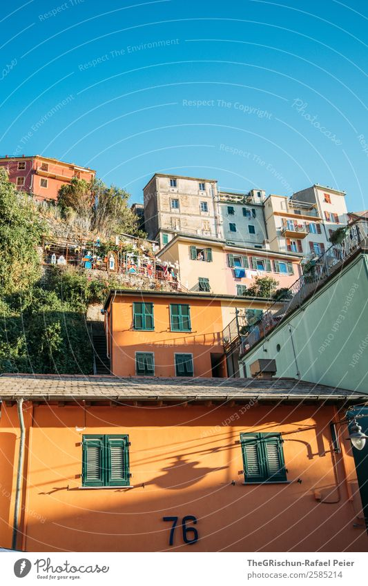 Manarola Fishing village Blue Multicoloured Yellow Cinque Terre Italy Travel photography Tourism House (Residential Structure) Vacation & Travel Hill Steep