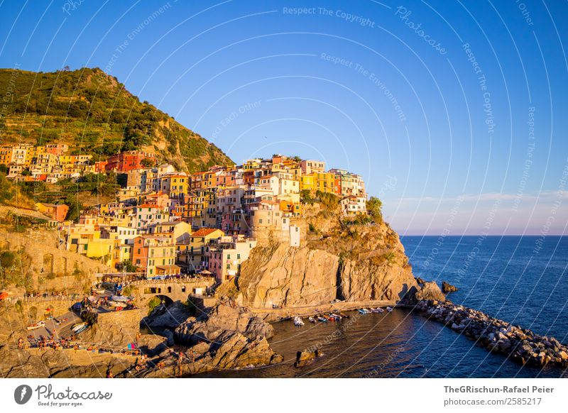 Manarola Landscape Village Fishing village Blue Multicoloured Yellow Gold Ocean Italy Cinque Terre Hill Vantage point Cliff Travel photography Vacation & Travel