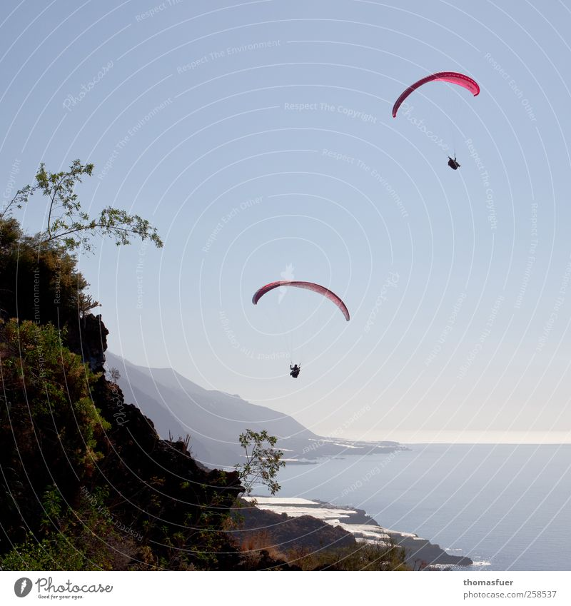 Icarus and Daedalus Leisure and hobbies Paragliding Vacation & Travel Adventure Far-off places Freedom Summer Sun Beach Ocean Island Mountain Sports Paraglider