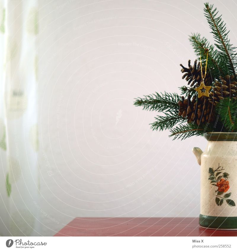 latecomers Decoration Table Leaf Gold Vase Christmas tree Christmas decoration Star (Symbol) Drape Fir branch Cone Colour photo Interior shot Deserted