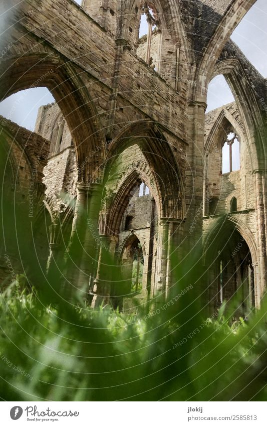 transience Sightseeing Architecture Plant Clouds Sun Sunlight Summer Beautiful weather Grass Leaf Park Meadow Deserted Church Dome Ruin Manmade structures