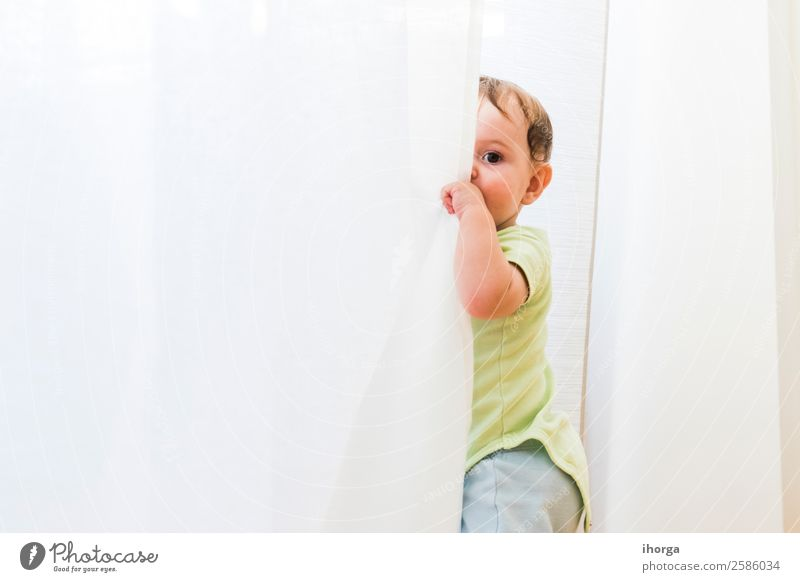 baby playing and hiding with white curtains Joy Happy Beautiful Face Playing Child Human being Baby Toddler Boy (child) Infancy 1 0 - 12 months Crawl Sit