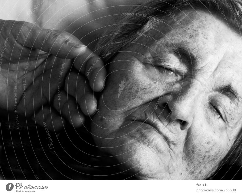 Tender Female senior Woman Face 1 Human being 60 years and older Senior citizen Sleep Old Protection Love Compassion Humanity finite very old tender old woman