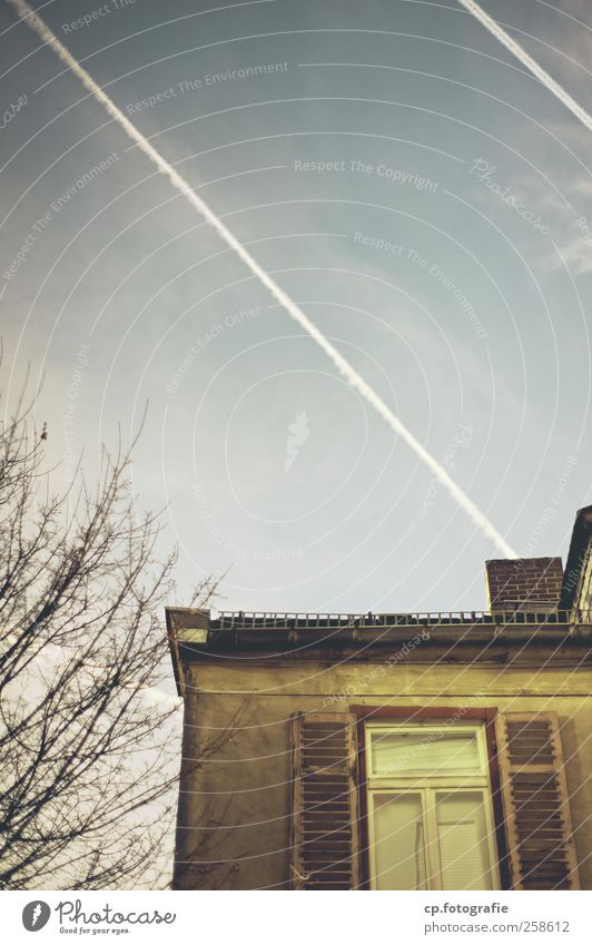 Tree House (Residential Structure) Window Roof Branch Beautiful weather Plaster Shutter Vapor trail