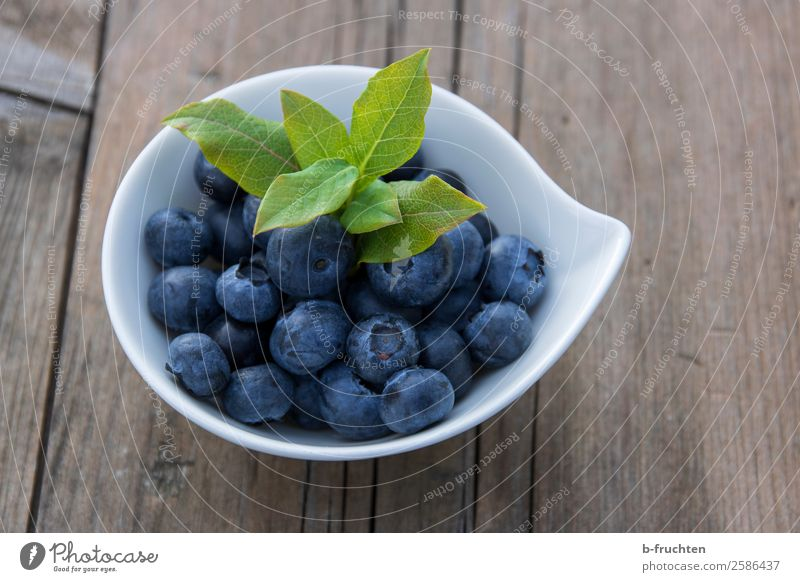 blueberries Food Fruit Nutrition Organic produce Vegetarian diet Bowl Healthy Eating Wood Fresh Delicious Round Blue Blueberry Berries Fruity Mature Harvest