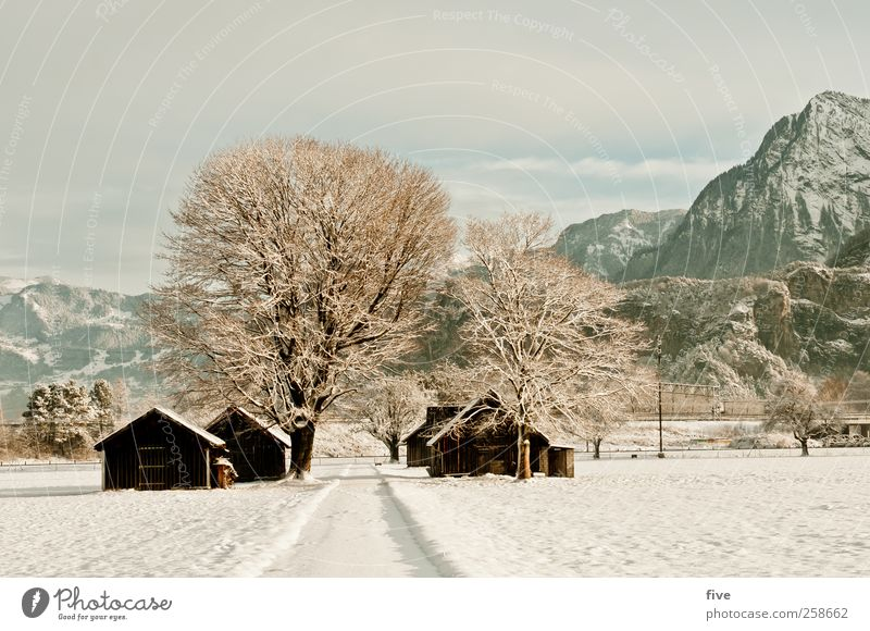 winter landscape Nature Landscape Earth Sky Clouds Winter Beautiful weather Ice Frost Snow Plant Tree Bushes Meadow Field Forest Hill Rock Mountain