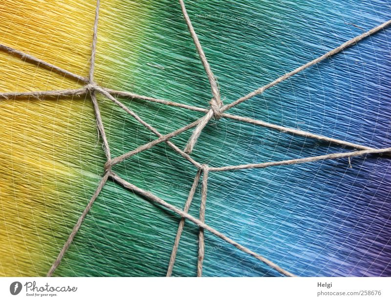 Blue Green Beautiful Yellow Gray Art Design Lie Esthetic Gift Exceptional Decoration Paper Safety Network Uniqueness