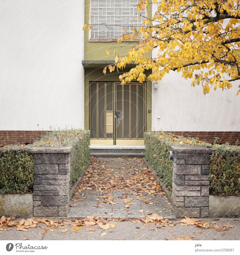 City Tree Plant House (Residential Structure) Autumn Architecture Garden Building Door Facade Gloomy Bushes Manmade structures Detached house