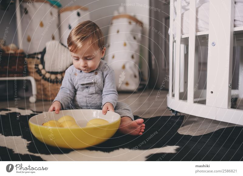 cute happy baby boy playing with plate of lemons Plate Lifestyle Style Happy Playing Winter Bedroom Child Baby Boy (child) Infancy Warmth Sweater Sit Small