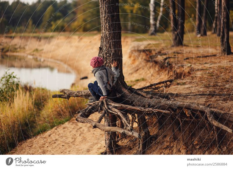 child girl climbing pine tree in autumn Lifestyle Joy Leisure and hobbies Vacation & Travel Trip Adventure Freedom Child Girl Infancy Nature Autumn Tree Forest