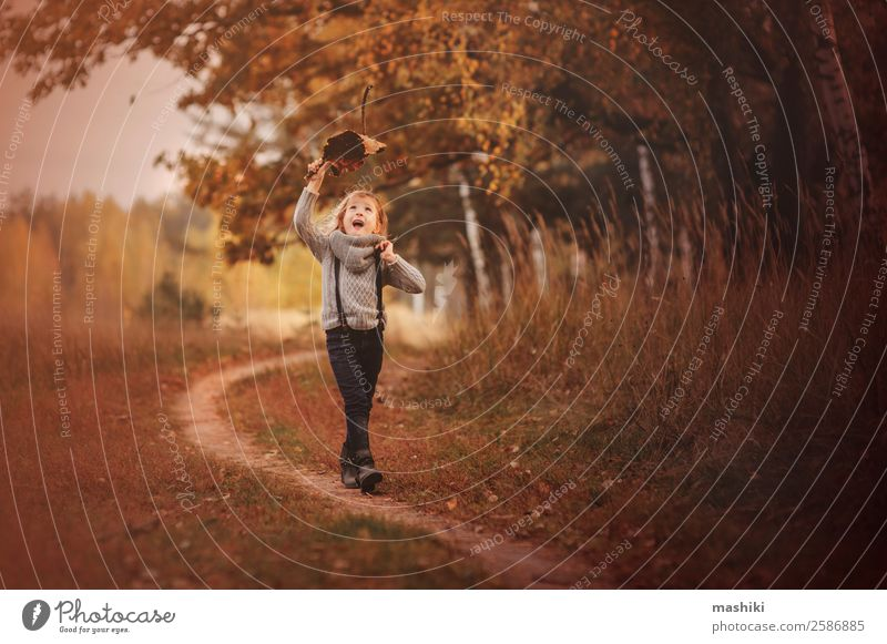 happy child girl walking in autumn Human being Child Nature Autumn Tree Park Forest Smiling Walking Adventure Infancy Joy Girl Seasons Playing Funny Happy