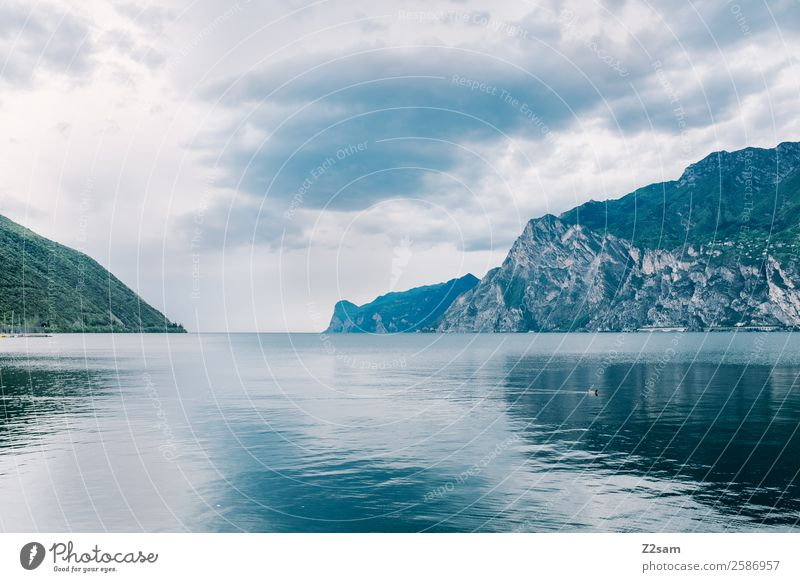 Lake Garda. Nature. Water. Landscape Sky Clouds Autumn Bad weather Mountain Lakeside Dark Cold Sustainability Natural Calm Loneliness Relaxation Horizon Idyll
