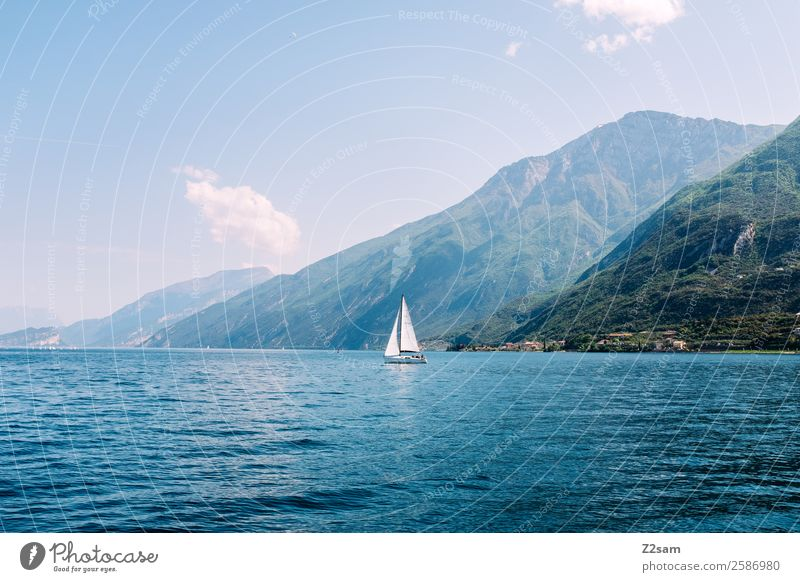 Lake Garda. Sailing ship. Environment Nature Landscape Summer Beautiful weather Mountain Lakeside Sailboat Elegant Sustainability Natural Blue Green Experience