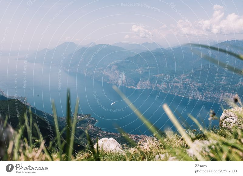 Lago di Garda | Paraglider pilots Leisure and hobbies Vacation & Travel Adventure Freedom Summer vacation Mountain Paragliding Nature Landscape Sky