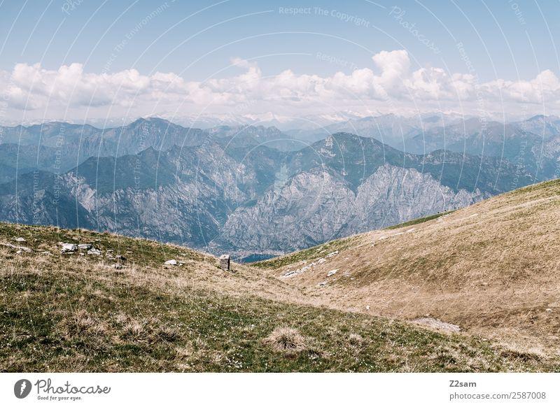 Monte Baldo Lake Garda. Environment Nature Landscape Summer Beautiful weather Meadow Alps Mountain Peak Simple Far-off places Gigantic Infinity Blue Adventure