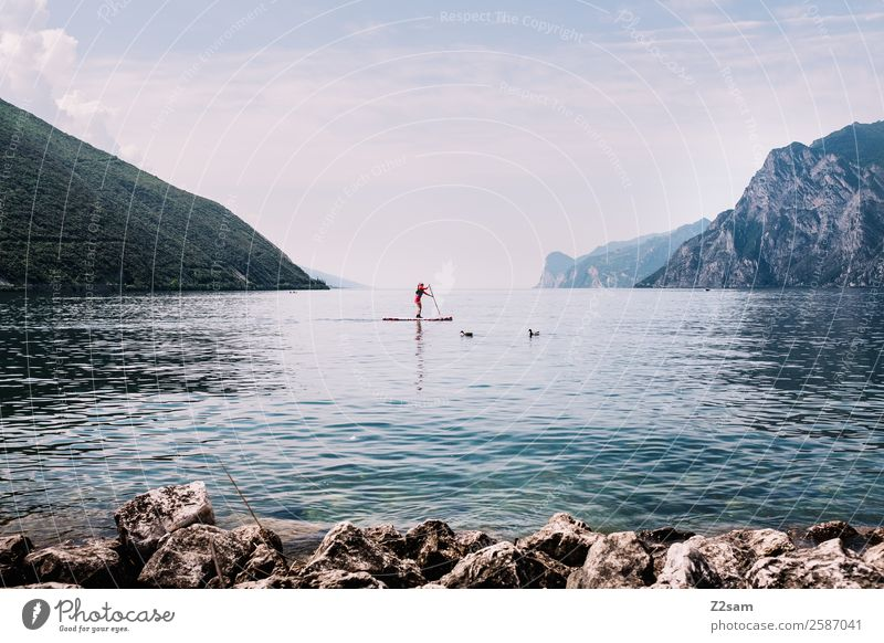 Lake Garda | Stand up paddling Lifestyle Leisure and hobbies Vacation & Travel Summer Summer vacation Aquatics Human being 1 Nature Landscape Sky
