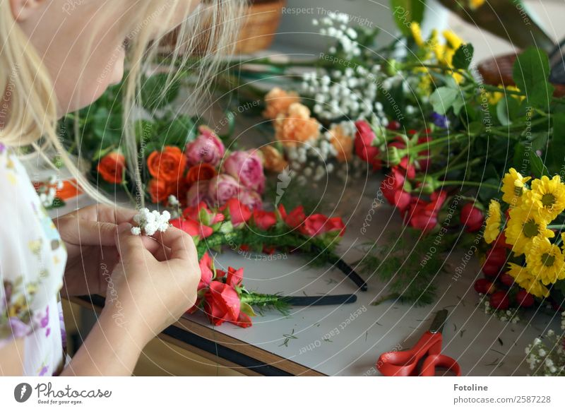 floral wreath making Human being Feminine Child Girl Infancy Skin Head Hair and hairstyles Face Arm Hand Fingers Summer Plant Flower Rose Blossom Fresh Natural