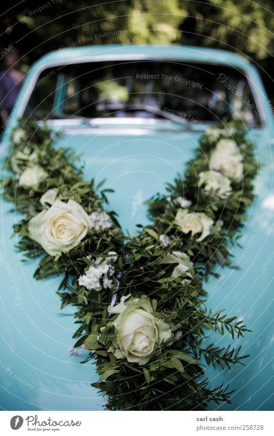 wedding car Lifestyle Elegant Esthetic Positive Warmth Blue Green Wedding Car Vintage car Flower wreath Rose Detail Colour photo Multicoloured Exterior shot