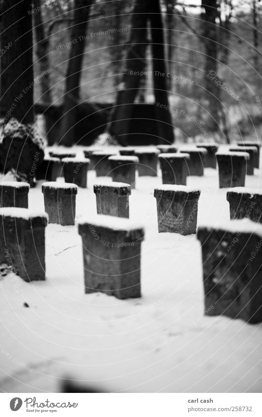 White Loneliness Calm Black Sadness Snow Death Gray Stone Peace Stress Apocalyptic sentiment To console Funeral Tombstone Cemetery