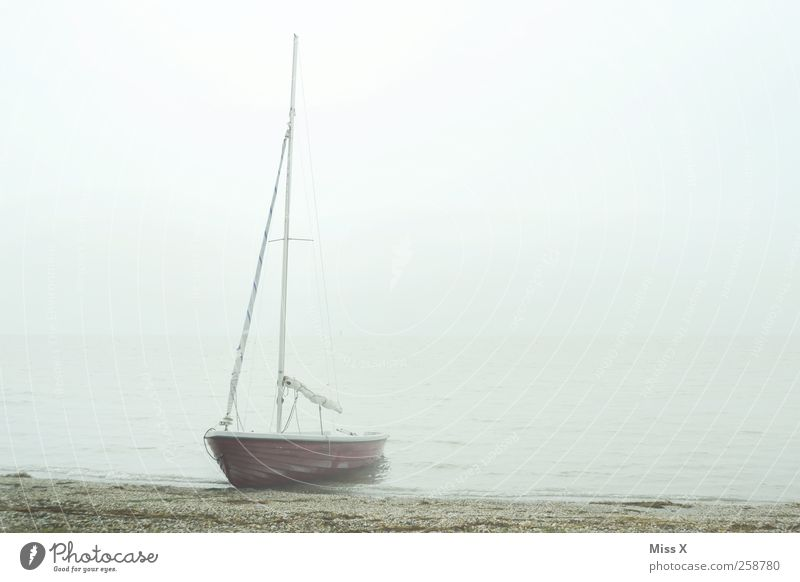 Charons Ferry Clouds Autumn Winter Bad weather Fog Coast Lakeside North Sea Ocean Navigation Sailboat Watercraft Swimming & Bathing Gloomy Gray Colour photo