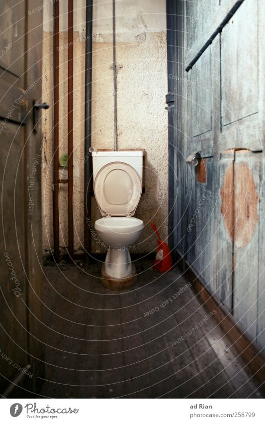 a throne for the people! Hut Factory Building Architecture Wall (barrier) Wall (building) Door Toilet Toilet brush Toilet paper Wood Old Esthetic Disgust Creepy