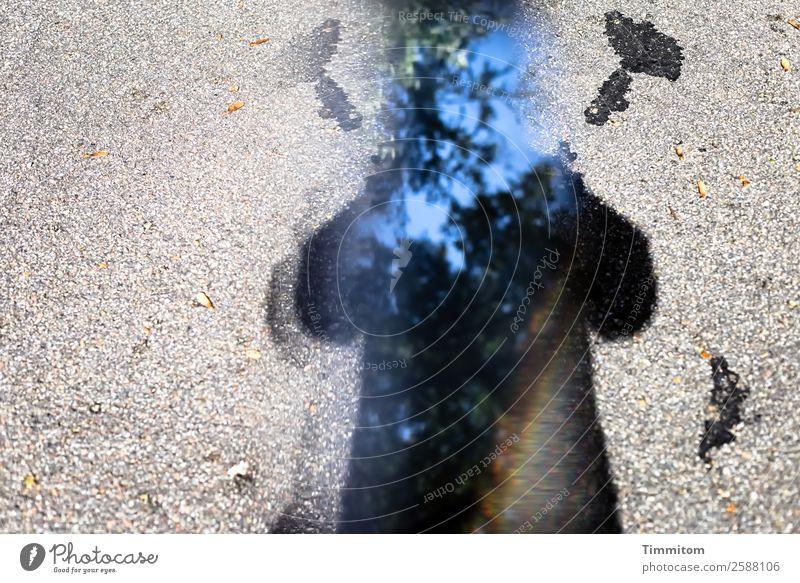 Blue Tree Black Street Lanes & trails Emotions Gray Sign Irritation Bravery